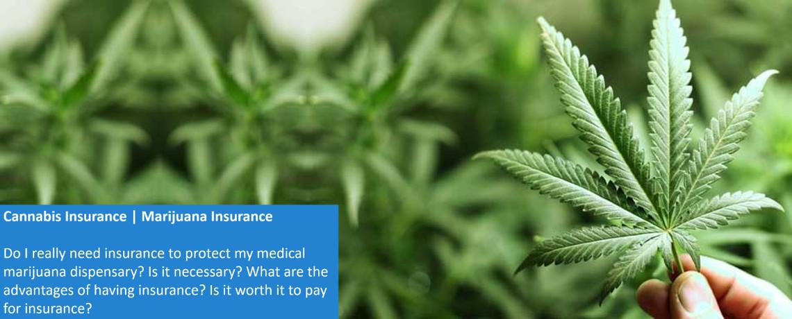 Slider – Cannabis Insurance